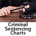2018 2019 Criminal Code Sentencing Provisions